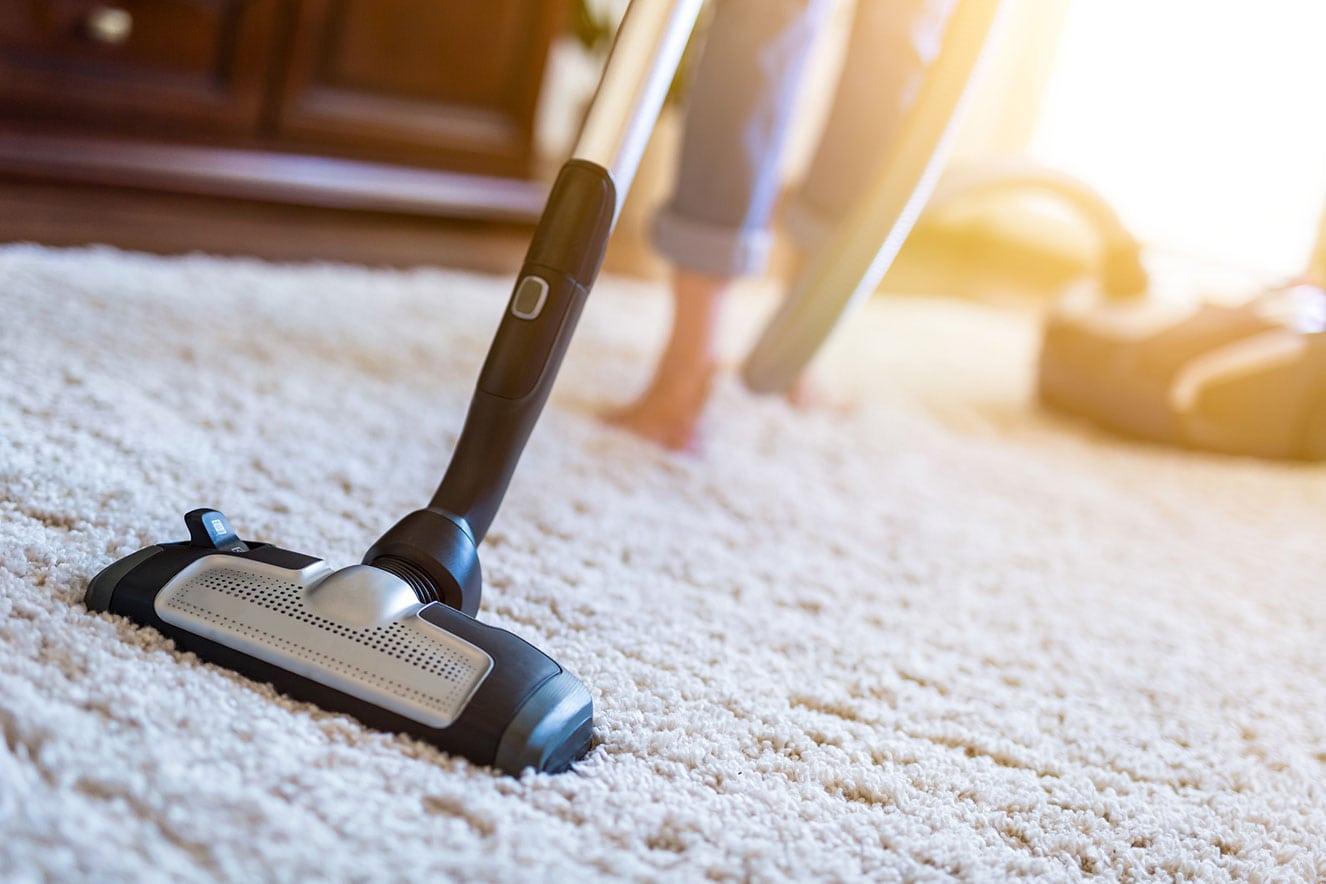como limpar a casa contra insetos